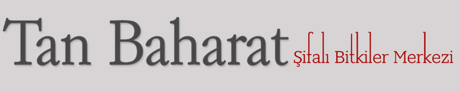 Tan Baharat